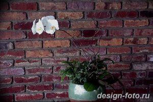 фото Орхидеи в интерьере 28.11.2018 №055 - photo Orchids in the interior - design-foto.ru