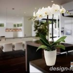 фото Орхидеи в интерьере 28.11.2018 №062 - photo Orchids in the interior - design-foto.ru