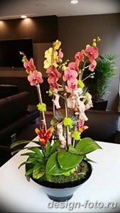 фото Орхидеи в интерьере 28.11.2018 №065 - photo Orchids in the interior - design-foto.ru