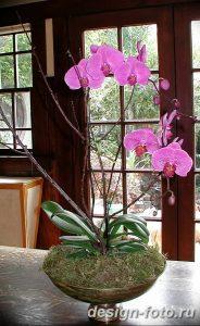 фото Орхидеи в интерьере 28.11.2018 №071 - photo Orchids in the interior - design-foto.ru