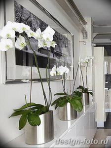 фото Орхидеи в интерьере 28.11.2018 №076 - photo Orchids in the interior - design-foto.ru