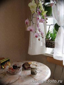 фото Орхидеи в интерьере 28.11.2018 №077 - photo Orchids in the interior - design-foto.ru