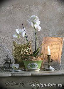 фото Орхидеи в интерьере 28.11.2018 №078 - photo Orchids in the interior - design-foto.ru