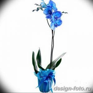 фото Орхидеи в интерьере 28.11.2018 №090 - photo Orchids in the interior - design-foto.ru
